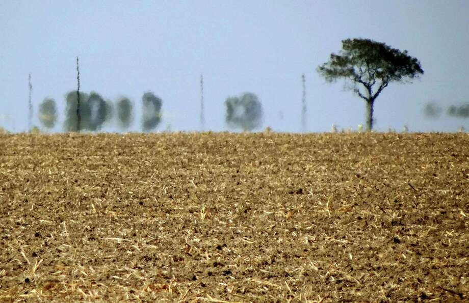 Fields in the Coastal Bend have crop residue which has not decomposed because the soil is too dry. Photo: Billy Calzada, San Antonio Express-News / SAN ANTONIO EXPRESS-NEWS