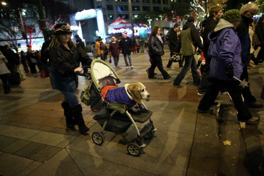 Homer, a basset hound, is pushed by his owner Denise Gillman after they listened to music during The Great Figgy Pudding Street Corner Caroling Competition on Friday, December 7, 2012. The annual event brought thousands of people downtown to hear groups sing and compete to raise money for the Pike Market Senior Center & Food Bank. Photo: JOSHUA TRUJILLO / SEATTLEPI.COM