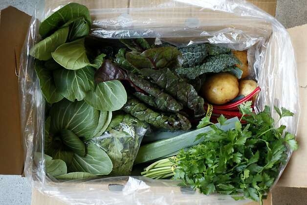 The contents of a small veggie box from Bloomfield Farms in Petaluma, delivered by Farmigo to the offices of Kiva in San Francisco, Calif., Wednesday, December 5, 2012.  Farmigo is a new startup that partners farmers with companies who want delivery of produce.  Office workers can customize their vegetable box order. Photo: Sarah Rice, Special To The Chronicle