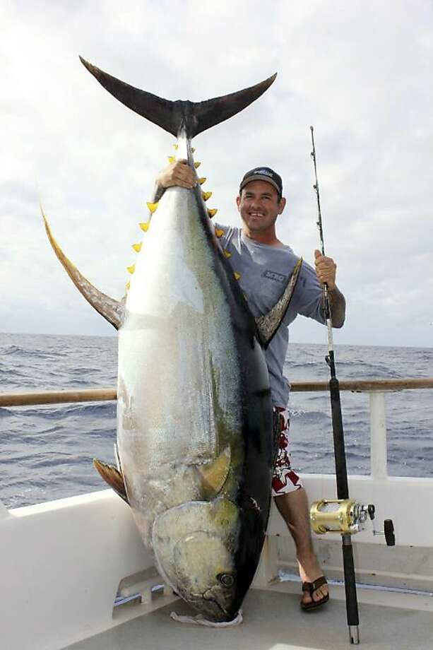 In this Dec. 3, 2012 photo from Excel Sportfishing, John Petruescu, of La Mesa, Calif., poses with 445-pound yellowfin tuna — a fish that outweighs the record for a rod-and-reel catch of the species but won't rewrite the books.  Petruescu caught the tuna on Dec. 3 at Hurricane Bank off Baja California, 960 miles from San Diego's Point Loma, where the 7-foot-long fish was weighed Sunday.  The electrician was aboard the San Diego-based Excel, whose captain twice handled the rod Petruescu was using.  For that reason, the catch won't be recognized as an official record by the International Game Fish Association, as anglers must work unassisted. (AP Photo/Courtesy Excel Sportfishing) Photo: Anonymous, Associated Press