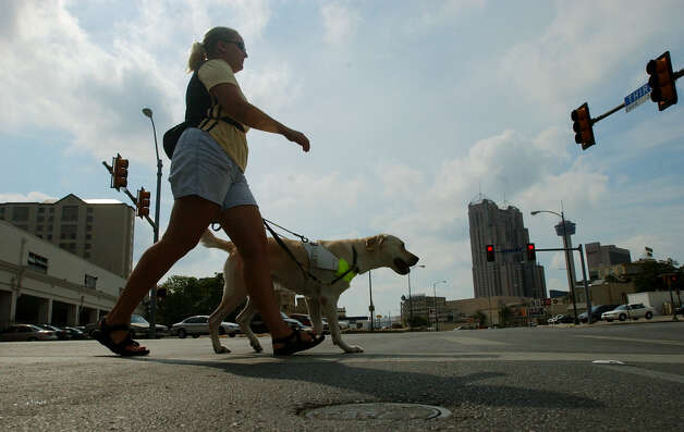 Sandy Merrill, an apprentice instructor, crosses a street with lab/golden retriever mix 2-year-old Brendie in downtown San Antonio on Monday, Sept. 8, 2003. The dog is being trained as a dog for the blind by Guide Dogs of Texas. Photo: JERRY LARA, San Antonio Express-News / SAN ANTONIO EXPRESS-NEWS