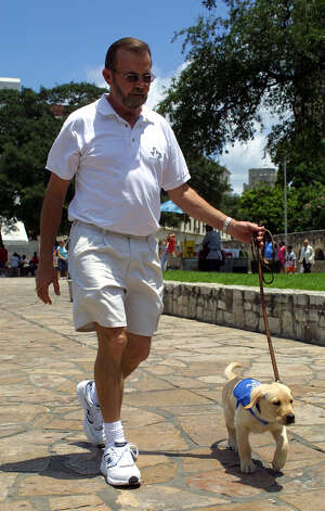 Larry Gelvin, a civilian volunteer with Guide Dogs of Texas works with the organization's newest puppy, Elmo, a yellow Lab/golden retriever mix. Photo: J. MICHAEL SHORT, San Antonio Express-News / SAN ANTONIO EXPRESS-NEWS