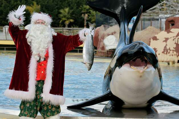 """A man dressed in a Santa Claus costume poses for photographers with a killer whale named """"Valentin"""" , at the animal exhibition park Marineland in Antibes, southern France, Tuesday, Dec. 11, 2012. Photo: Lionel Cironneau, Associated Press / AP"""