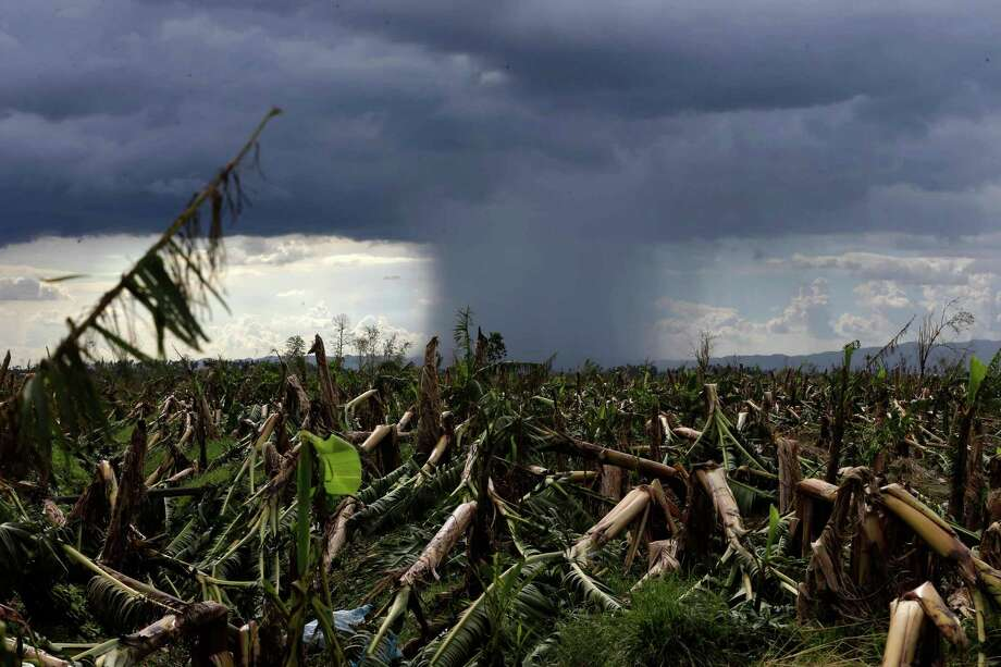 A rare cloud formation is seen amidst destroyed banana plantation four days after typhoon Bopha left hundreds of people killed and rendered extensive damage to agriculture at Montevista township, Compostela Valley in southern Philippines Saturday Dec. 8, 2012. Search and rescue operations following typhoon that killed nearly 600 people in the southern Philippines have been hampered in part because many residents of this ravaged farming community are too stunned to assist recovery efforts, an official said Saturday. Photo: Bullit Marquez, Associated Press / AP