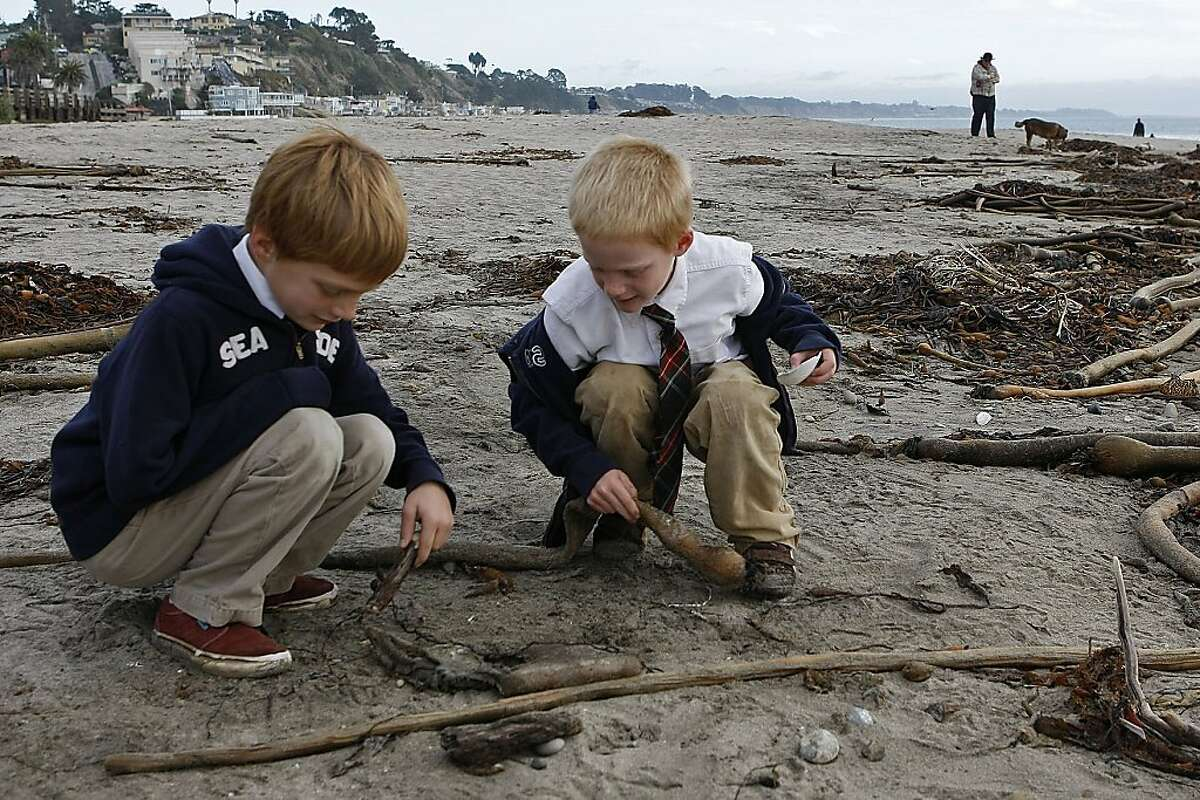 Leif Martin (left), 8, and brother Ryle, 6, study a Humboldt squid carcass at Rio del Mar Beach in Aptos.
