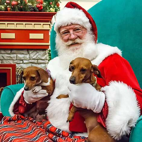 Few things are merrier than a dachshund in each arm. (Sandy and Daisey, San Antonio's North Star Mall.) Photo: Marvin Pfeiffer, Marvin Pfeiffer / Prime Time New