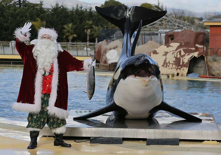He's making a list, he's checking a wish, he's going to lose an arm if he keeps waving that fish. Photo: Lionel Cironneau, Associated Press