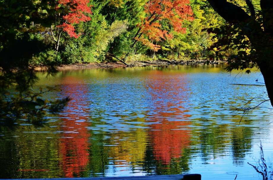 "Shari Crocker, Best Nature in Autumn for ""Fall Reflections"""