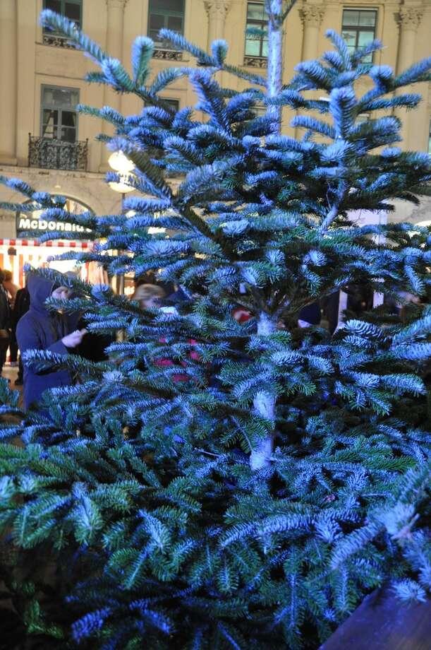 Tree at the Munich Christmas Market