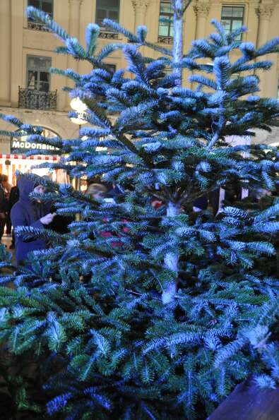 Tree at the Munich Christmas Market