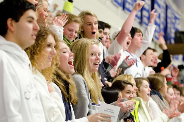 Fans enjoy the Darien boys ice hockey game against Hamden High School at the Darien Ice Rink on Wednesday, Dec. 12, 2012. Photo: Amy Mortensen / Connecticut Post Freelance