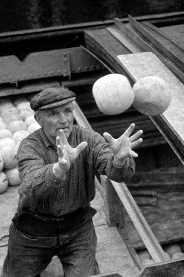 A workman catches two Edam cheeses as he loads them onto a barge for shipment to other parts of Holland circa 1937. Photo: Fox Photos, Getty Images / Hulton Archive