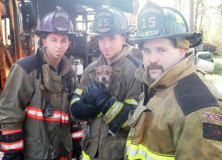 Firefighters saved a small dog after a fire raced through a home in Montgomery County Thursday morning. Photo: MCFMO