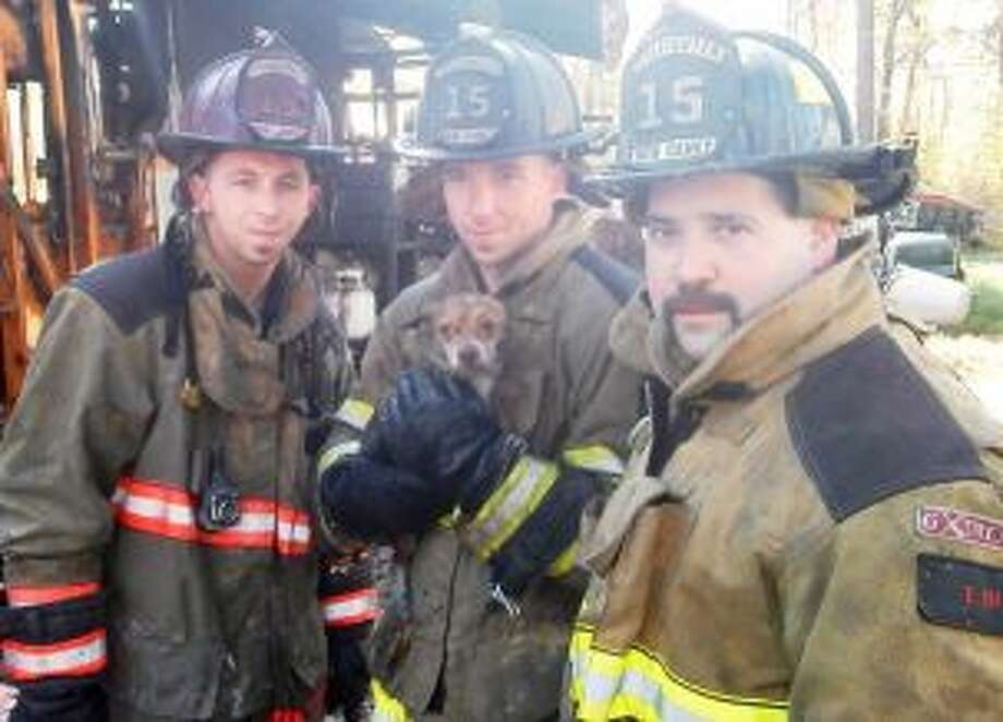 Firefighters saved a small dog after a fire raced through a home in Montgomery County Thursday morning. Photo: MCFMO / HC
