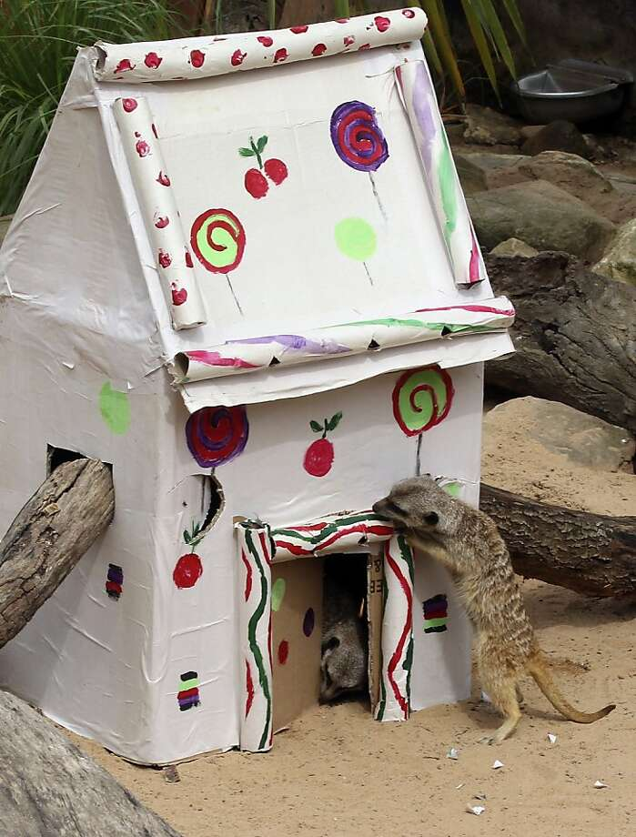 Hansel and Gretel: Having lost their way after birds ate their trail of breadcrumbs, our heroes come to a cottage built of gingerbread. (Taronga Zoo in Sydney, Australia.) Photo: Rob Griffith, Associated Press
