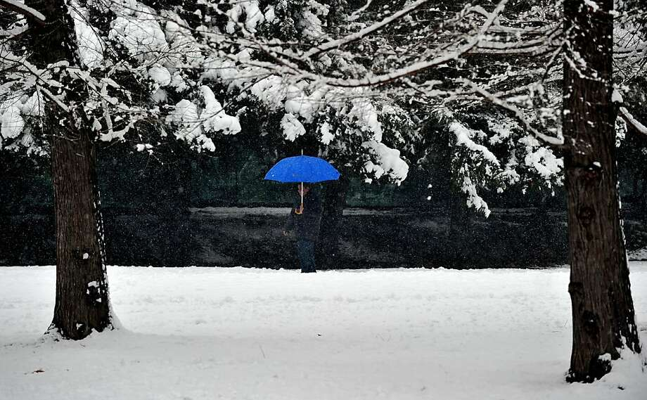 Blue bumbershoot:An Italian takes cover from the falling snow in a park in Milan. Photo: Tiziana Fabi, AFP/Getty Images