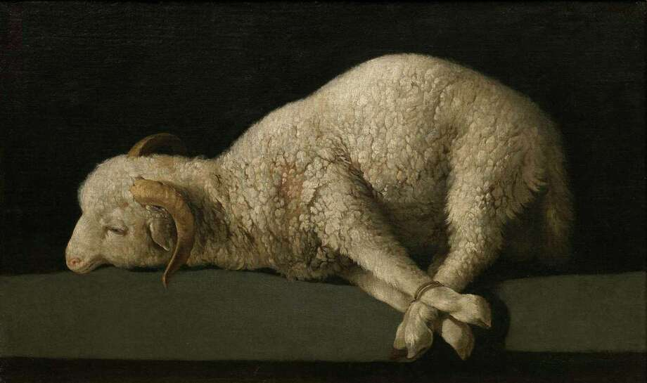"Francisco de Zurbarán, Lamb of God, 1635?40, oil on canvas, Museo Nacional del Prado, Madrid.   Photographic Archive, Museo Nacional del Prado, Madrid. On view in ""Portrait of Spain: Masterpieces from the Prado"" at the Museum of Fine Arts, Houston through March 31. The exhibition is organized by Museo Nacional del Prado, Madrid in association with The Museum of Fine Arts, Houston Photo: Museo Nacional Del Prado, Fotógrafo Museo Del Prado"