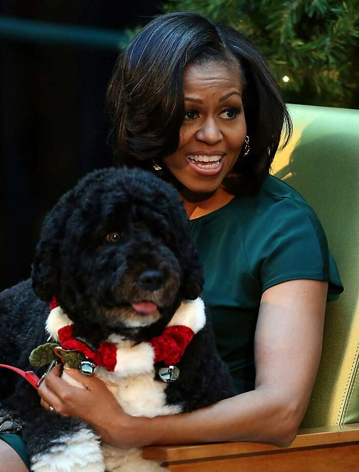 First lady Michelle Obama speaks to children as her dog Bo sits on her lap during a visit at Children's National Medical Center on December 14, 2012 in Washington, DC. The first lady toured the hospital before greeting 200 patients and hospital staff. Photo: Mark Wilson, Getty Images