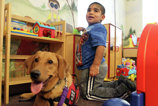 "John Carlos Lopez,4, plays at Any Baby Can Wednesday December 12, 2012. ""Grace"" the Labrador retriever (left) can monitor John Carlos' low blood sugar and can alert when necessary. Any Baby Can assists families with children who suffer from chronic illness, disability or developmental delay. Photo: John Davenport, San Antonio Express-News / ©San Antonio Express-News/Photo Can Be Sold to the Public"