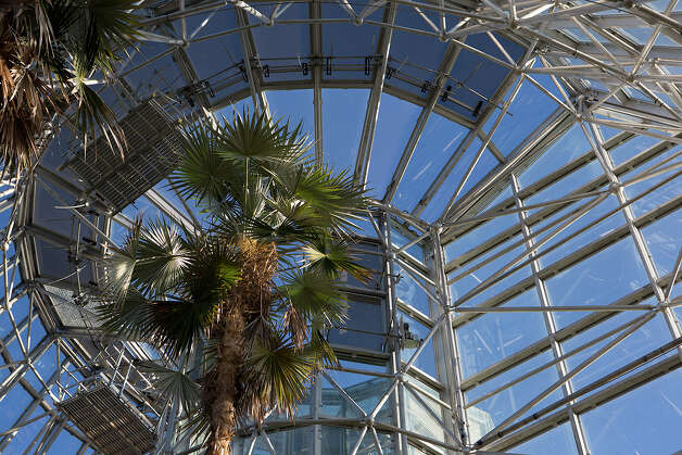 The Lucile Halsell Conservatory is pictured at the San Antonio Botanical Garden on Wednesday, Dec. 12, 2012. Photo: Michael Miller, For The Express-News / © San Antonio Express-News