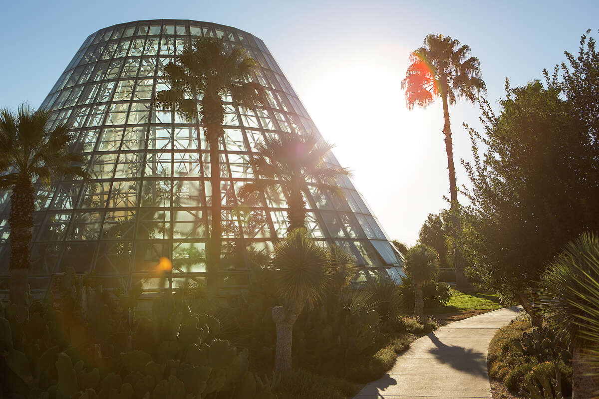 The Lucile Halsell Conservatory at the San Antonio Botanical Garden is futuristic-looking as it reaches 65 feet into the sky.