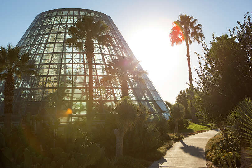 The Lucile Halsell Conservatory, the soaring glass tower of the Palm and Cycad Pavilion at th