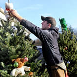 Christmas trees are carried from a near-by firehouse, placed and then decorated along the road leading to the Sandy Hook Elementary School in Newtown, Conn. Saturday, Dec. 15, 2012.