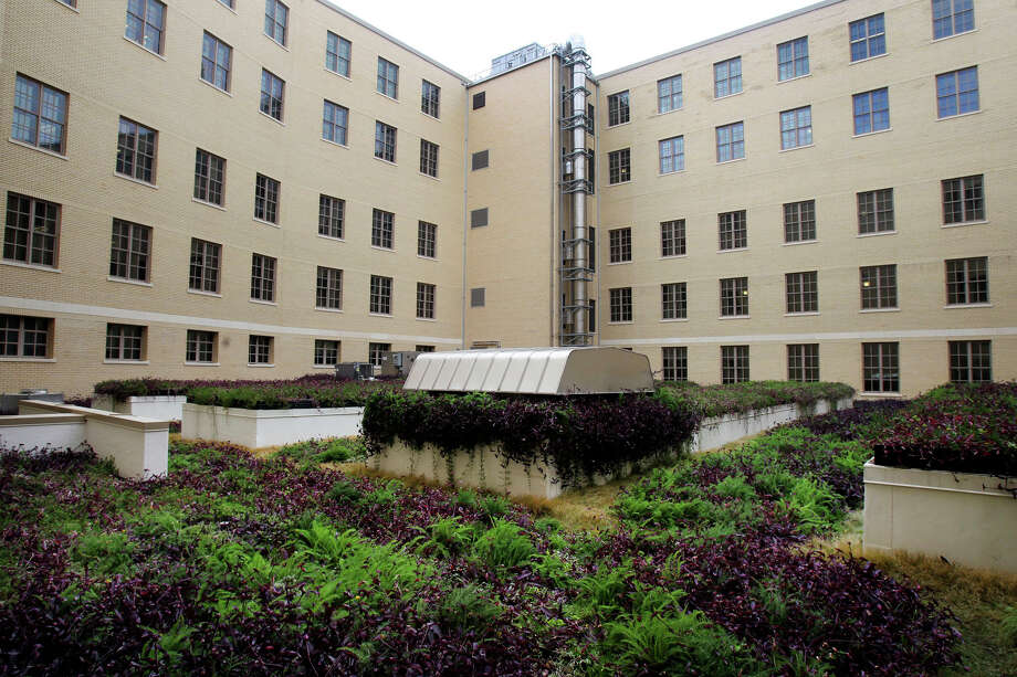 """The vegetated """"green"""" roof at the Hipolito F. Garcia Federal Building promotes biodiversity, restores habitat for wildlife and reduces heat. Other sustainable features at the building include gray water collection, an electric refueling station and insulation improvements. Photo: JOHN DAVENPORT, San Antonio Express-News / ©San Antonio Express-News/Photo Can Be Sold to the Public"""