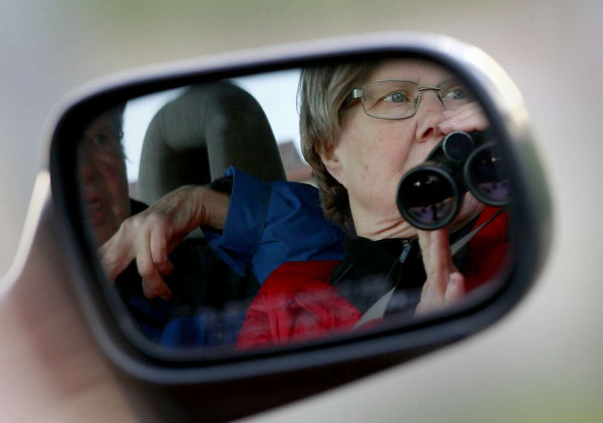 Leah Norwood (right) and Ardith Betts (left) watch a group of geese from their car. The annual Christmas bird count by the Audubon Society took place Sunday December 16, 2012 in the East Bay. A group of veteran bird watchers took on the task in Alameda, Calif. early in the morning.