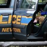A teddy bear and flowers sit in the cruiser of Newtown Police Officer Maryhelen McCarthy while she places the items at a makeshift memorial outside St. Rose of Lima Roman Catholic Church, Sunday, Dec. 16, 2012, in Newtown, Conn. On Friday, a gunman allegedly killed his mother at their home and then opened fire inside the Sandy Hook Elementary School in Newtown, killing 26 people, including 20 children. (AP Photo/Julio Cortez)