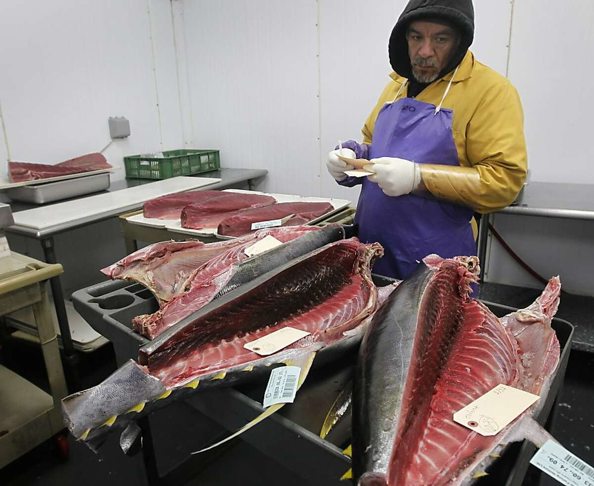 Eliseo Castillo tags yellow fin tuna at Ports Seafood in San Francisco, Calif., on Friday, Jan. 14, 2011. A statewide study revealed that tuna and swordfish samples collected from grocery stores and restaurants contained as much as three times the level of mercury deemed harmful by federal standards.