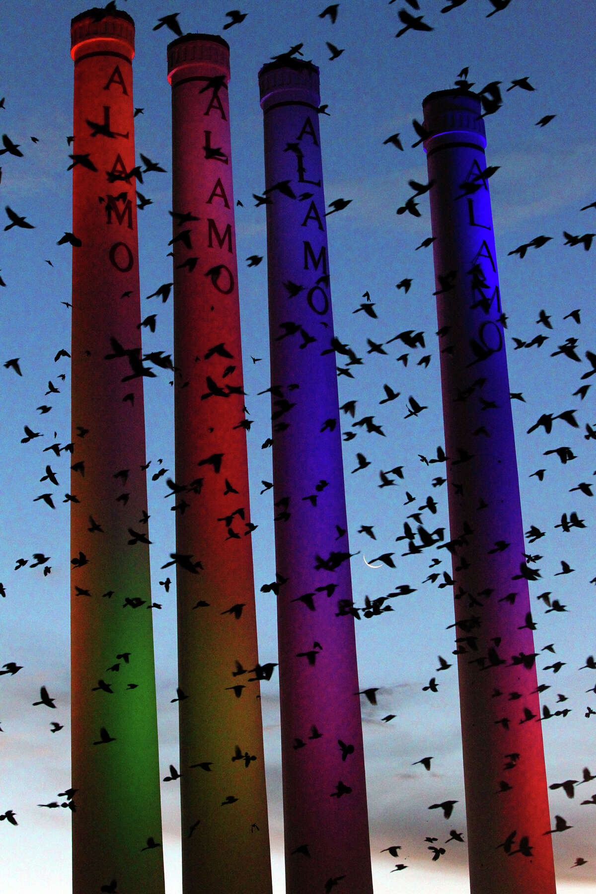 A flock birds flies in front of the smokestacks at the Alamo Quarry Market Tuesday Morning December 11, 2012.