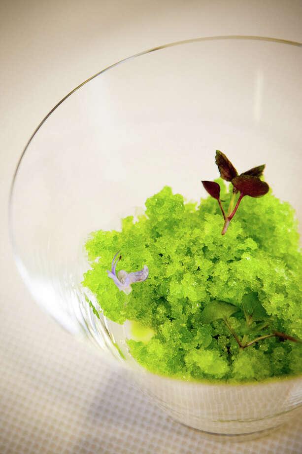 Pre-dessert: Sudachi shiso cream (Creel Films)