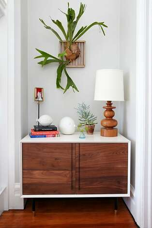 Staghorn ferns, a Lauren Nelson favorite. Photo:  Aaron Leitz Photography