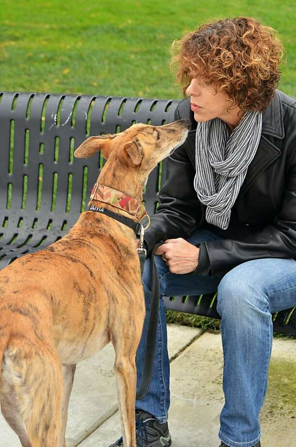 Eileen Mitchell steeled herself for rejection after leaving Olivia with sitters, having been through a similar experience with an earlier greyhound, Elvis. Photo: Sharon Giordano