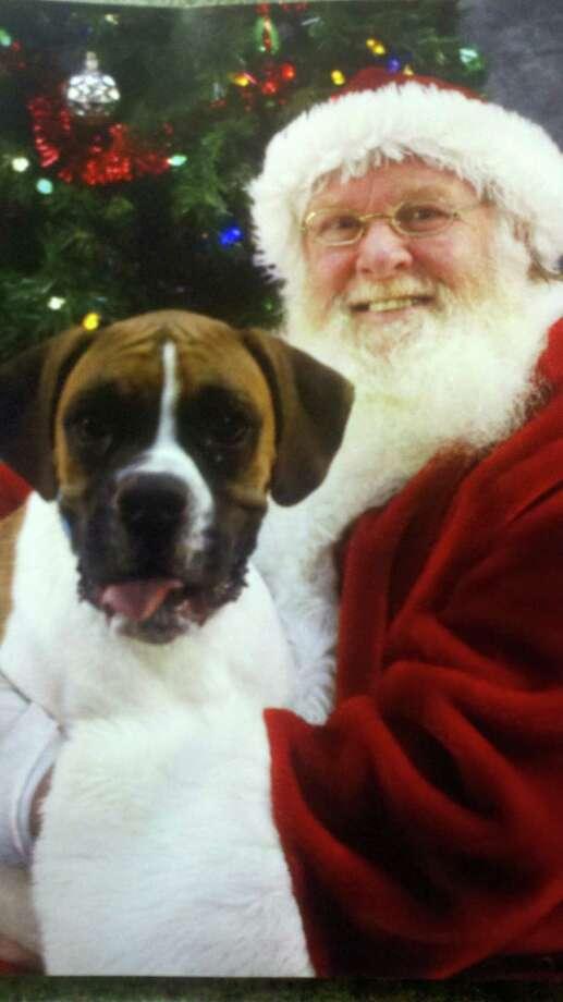Brodie, East Greenbush man Josh Cushing's pet, tells Santa Claus what he wants for Christmas (Josh Cushing)