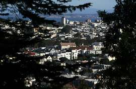Urban vistas are visible through the thick foliage at the Sutro Forest Open Space Reserve in San Francisco, Calif. on Tuesday, Dec. 18, 2012.