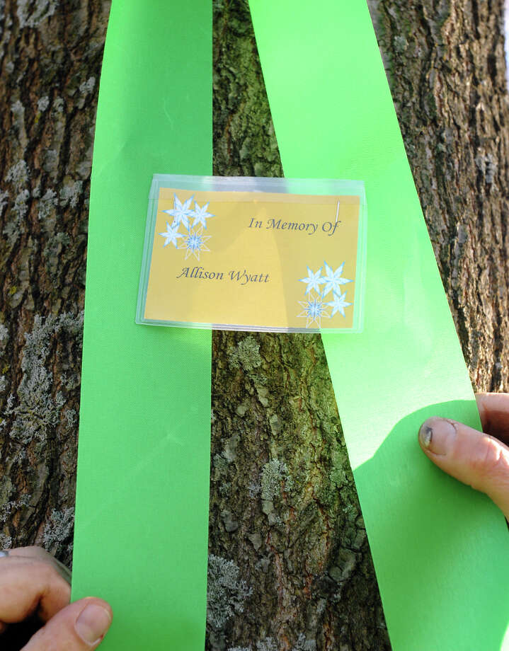 A tag reads the name of Allison Wyatt, put there by workers from Brickman Group, a national landscaping company, put up green ribbons on 26 trees on Southbury Green property along Main Street in Southbury Conn. on Thursday December 20, 2012. The ribbons were placed in memory of the victims of the mass shooting at Sandy Hook Elementary School his past Friday. They also placed a tag on each ribbon with a victim's name, including Allison's, whose funeral was taking place down the street. Photo: Christian Abraham / Connecticut Post