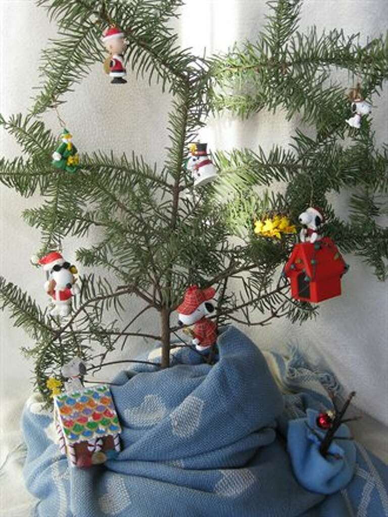 got the worst tree enter the charlie brown christmas tree contest sfgate - Christmas Tree Charlie Brown