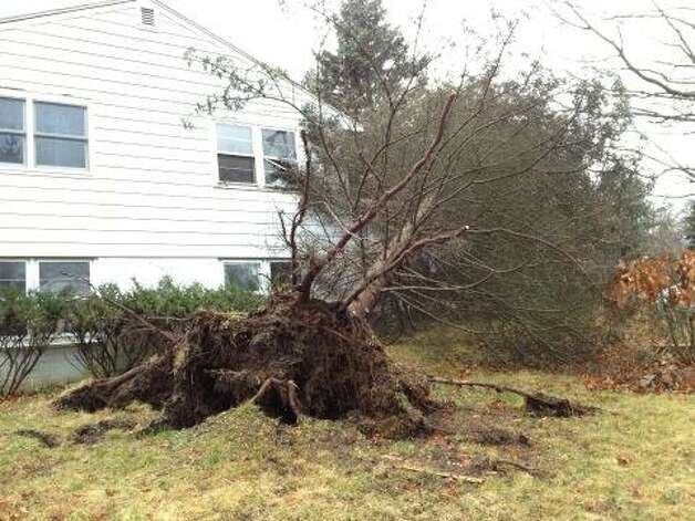 A tree fell on a house in West Sand Lake from high winds in a storm on Friday, Dec. 21, 2012. (Lori Van Buren/Times Union)