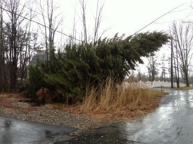 A tree leans on power lines Averill Park on Friday, Dec. 21, 2012. (Lori Van Buren/Times Union)