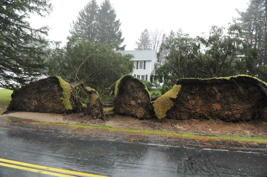 Uprooted trees in the front yard of Jon Hall's house on the corner of Gettle Rd. old Rt. 66 near Crystal on Friday Dec. 21, 2012 in Averill Park, N.Y.  A storm that brought rain and high winds cause major damage in this area.   (Lori Van Buren / Times Union) Photo: Lori Van Buren