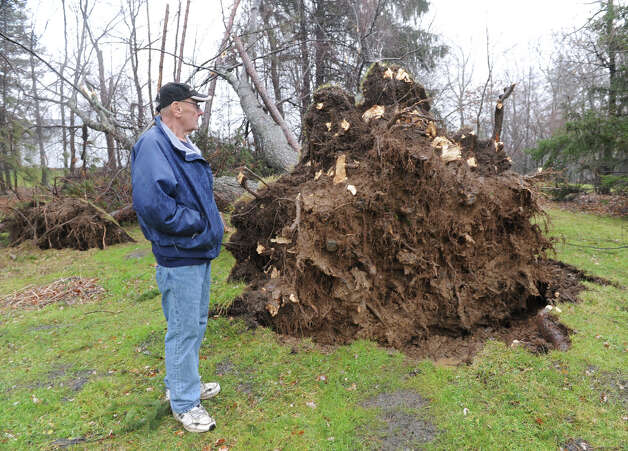 Jon Hall stands next to some unrooted trees in the back yard of his house on the corner of Gettle Rd. old Rt. 66 near Crystal on Friday Dec. 21, 2012 in Averill Park, N.Y. A storm that brought rain and high winds cause major damage in this area.  (Lori Van Buren / Times Union) Photo: Lori Van Buren