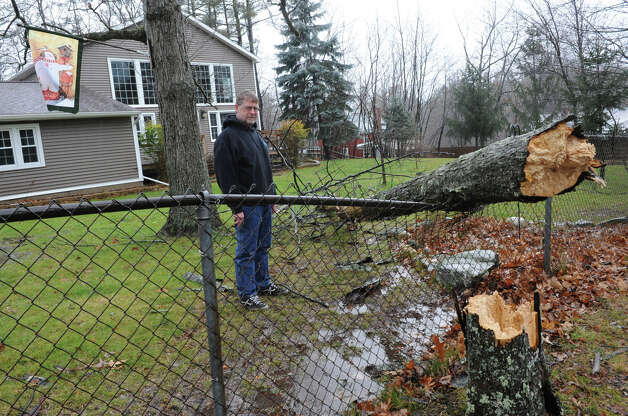 Mark Cusack looks at a tree that fell on his fence from high winds and rain on Friday Dec. 21, 2012 in Averill Park, N.Y.  (Lori Van Buren / Times Union) Photo: Lori Van Buren