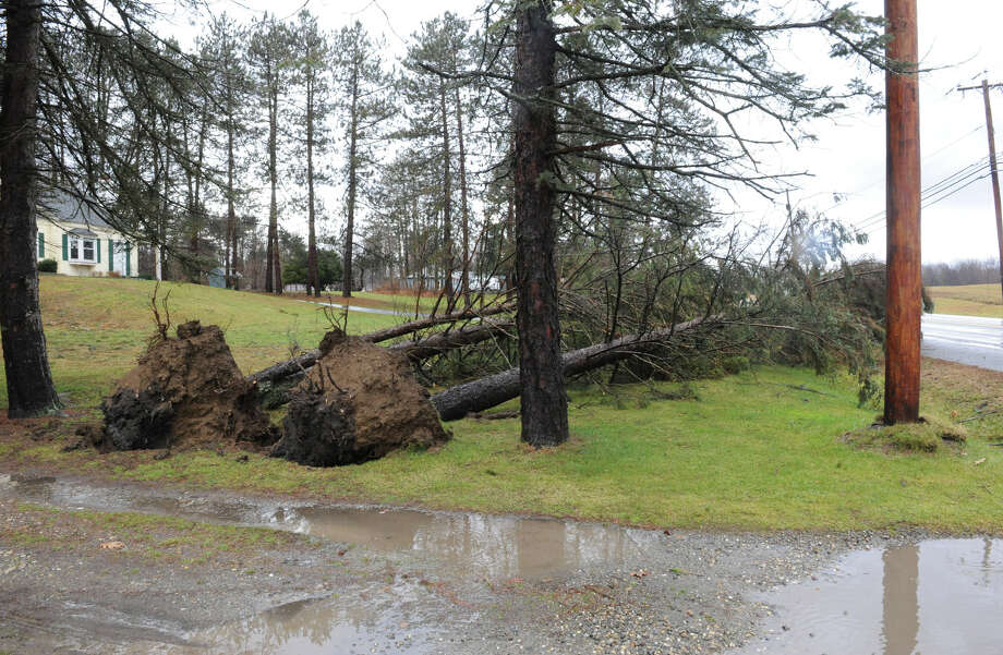 Uprooted trees along a driveway from high winds and rain on Friday Dec. 21, 2012 in Averill Park, N.Y.  (Lori Van Buren / Times Union) Photo: Lori Van Buren