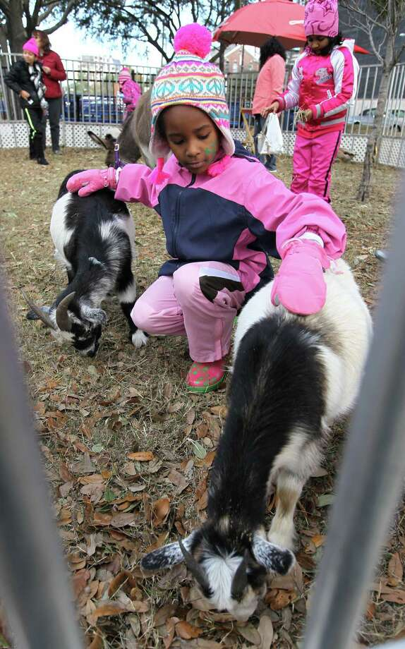 Kennedy Kyle, 8, pets the baby goats in the petting zoo. Photo: Karen Warren, Houston Chronicle / © 2012 Houston Chronicle
