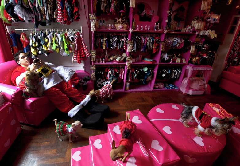 A man dressed in a Santa Claus costume chats on his cell phone as he works at a dog boutique where c