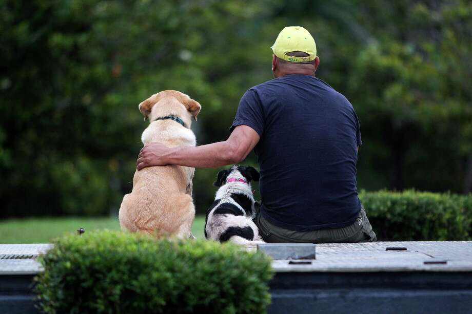 """I like dogs more than I like people, "" Alfred Gomez said as he sat with his dogs Starbuck, left, and Sophie, at the Gus Wortham Fountain Friday, May 11, 2012, in Houston. Gomez, who takes his dogs to the fountain twice a day, said he also likes to interact with people. ""I like people, dog people,"" he said. Photo: Johnny Hanson, Houston Chronicle / © 2012  Houston Chronicle"
