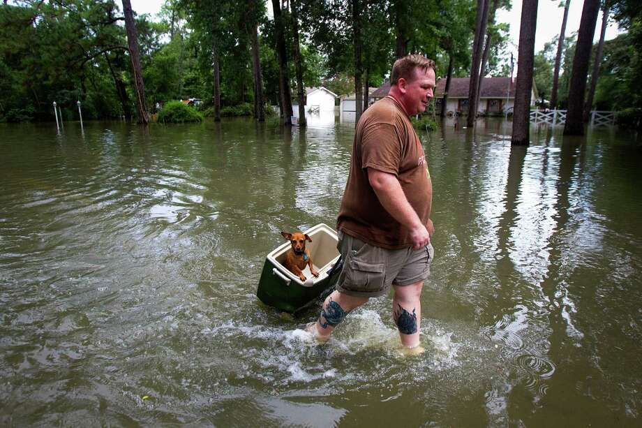 Jason Craig pulls his dog, Simon, in an ice chest through the flooded street of Pine Belt Drive Friday, July 13, 2012, in Cypress. Photo: Cody Duty, Houston Chronicle / © 2011 Houston Chronicle