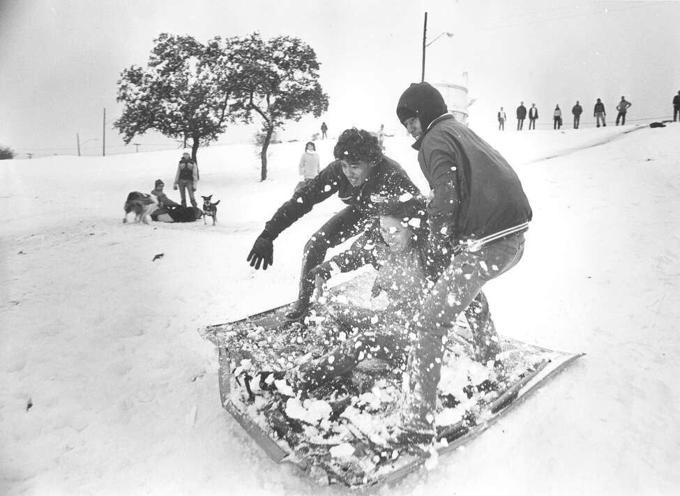 Two men and a woman sled down a hill at Hildebrand and Devine, behind Trinity University, on Jan. 13, 1985.